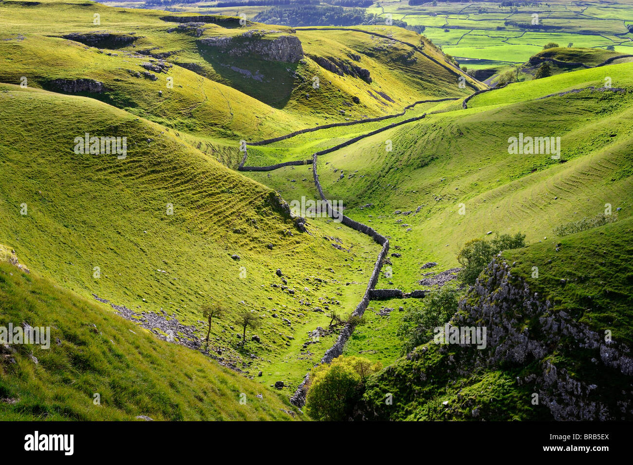 Limestone dale and crags at Conistone, Wharfdale, North Yorkshire, England - Stock Image