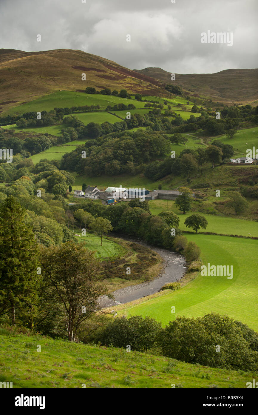 Upland farm on the banks of the river Ystwyth at Cwmystwyth Cwm Ystwyth Ceredigion Wales UK - Stock Image