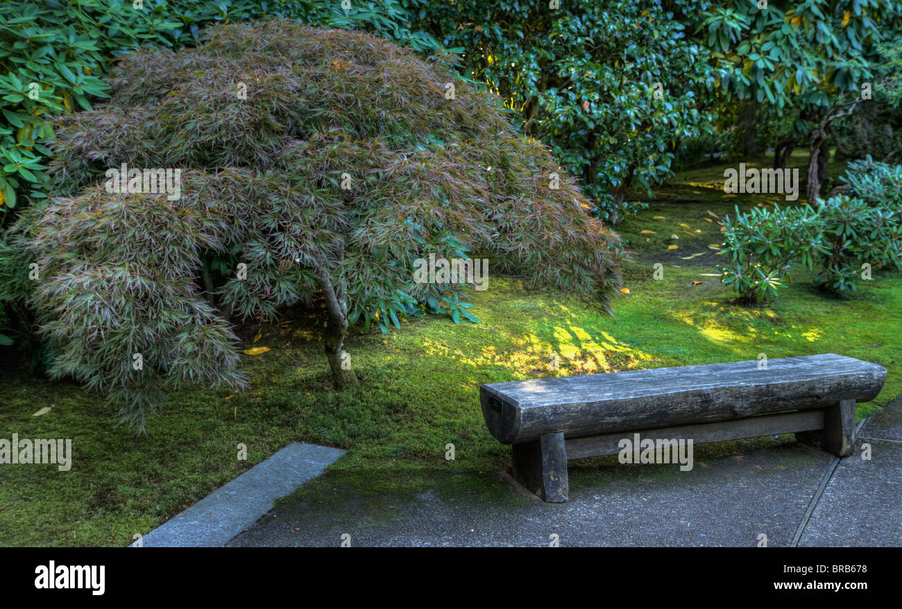 Japanese Garden Stone Bench Next To Maple Done As HDR Image   Stock Image