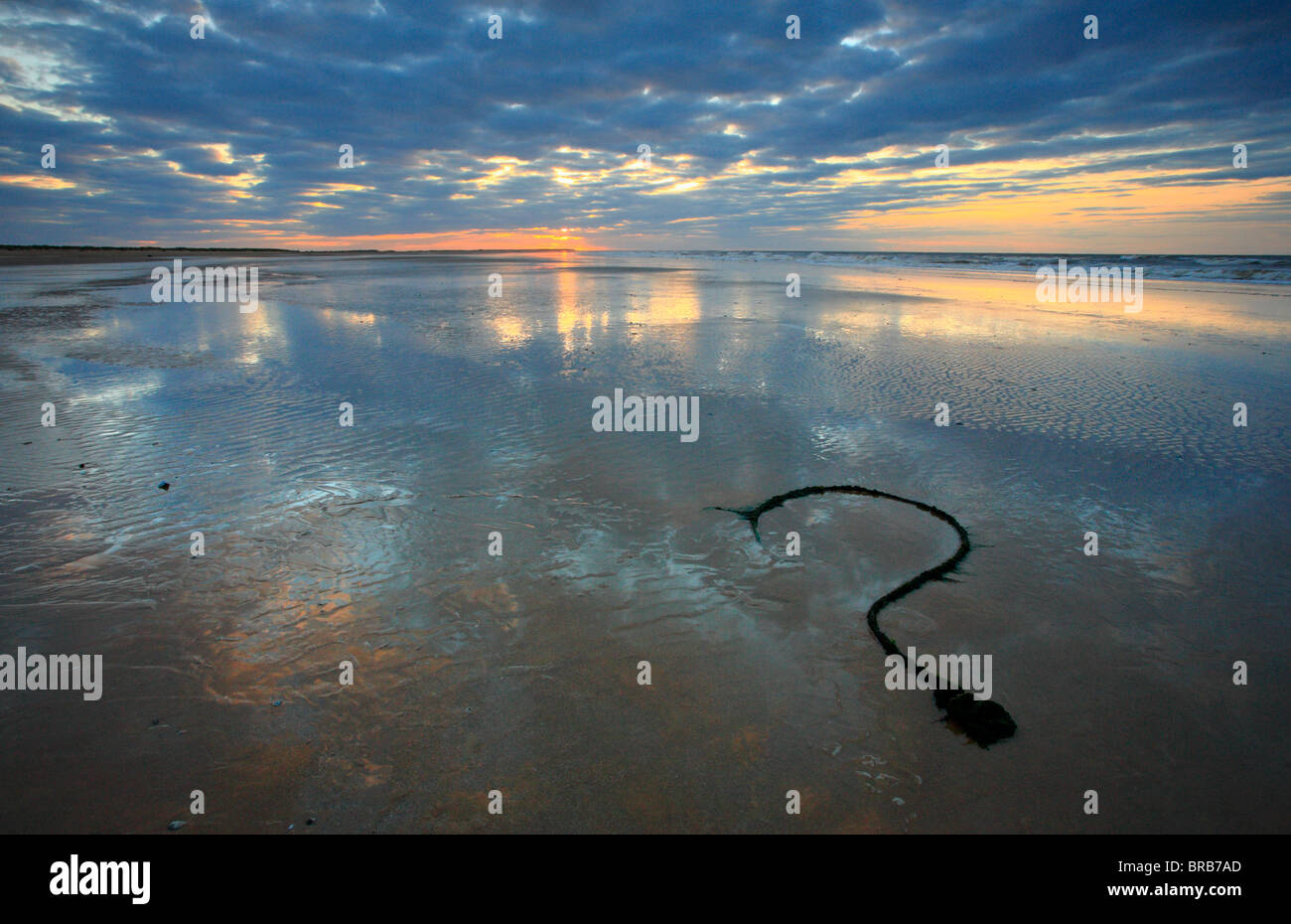 An old rope on Brancaster beach in the shape of a question mark. - Stock Image