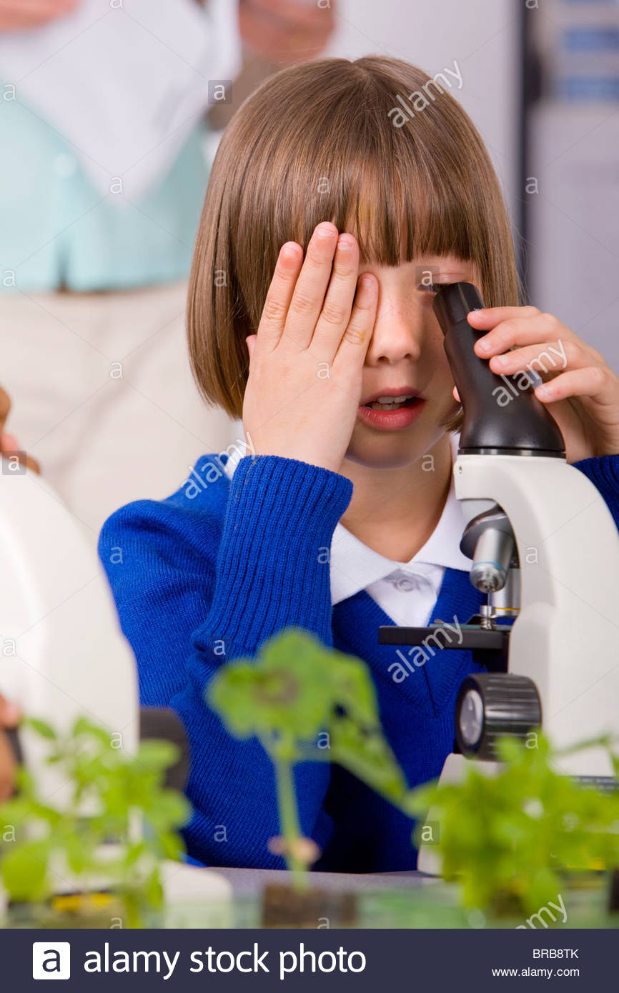 School girl looking into microscopes in classroom laboratory - Stock Image