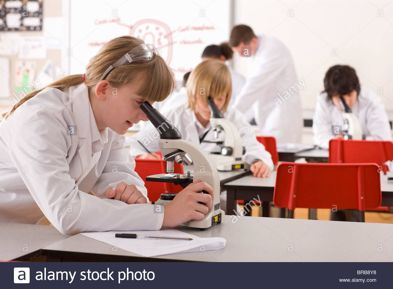 Students looking into microscopes in school laboratory - Stock Image