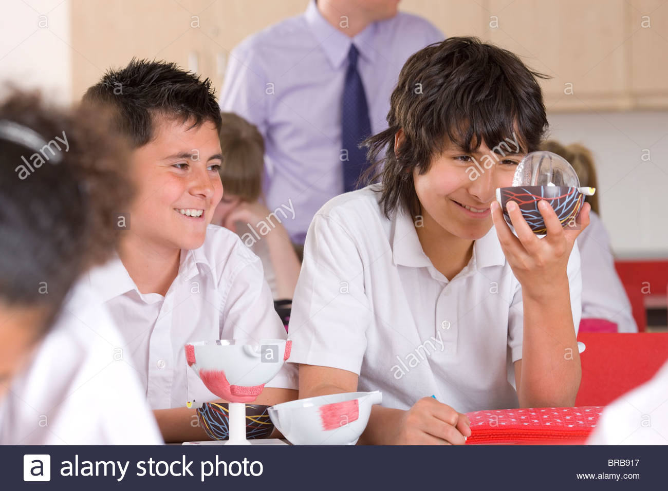 School boys working with biology model in classroom - Stock Image