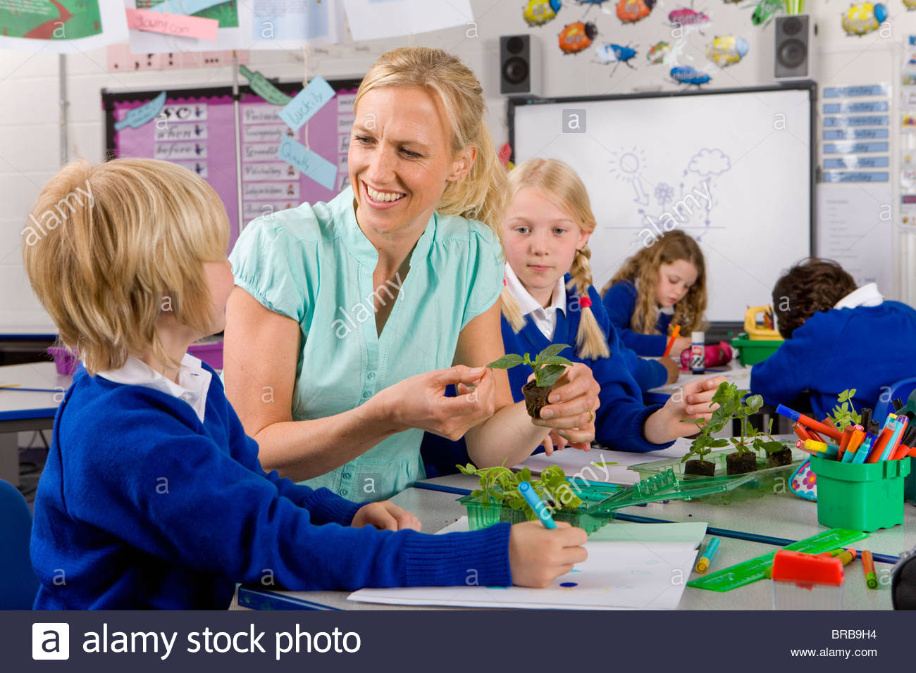 Teacher and school children looking at plant seedlings in classroom - Stock Image