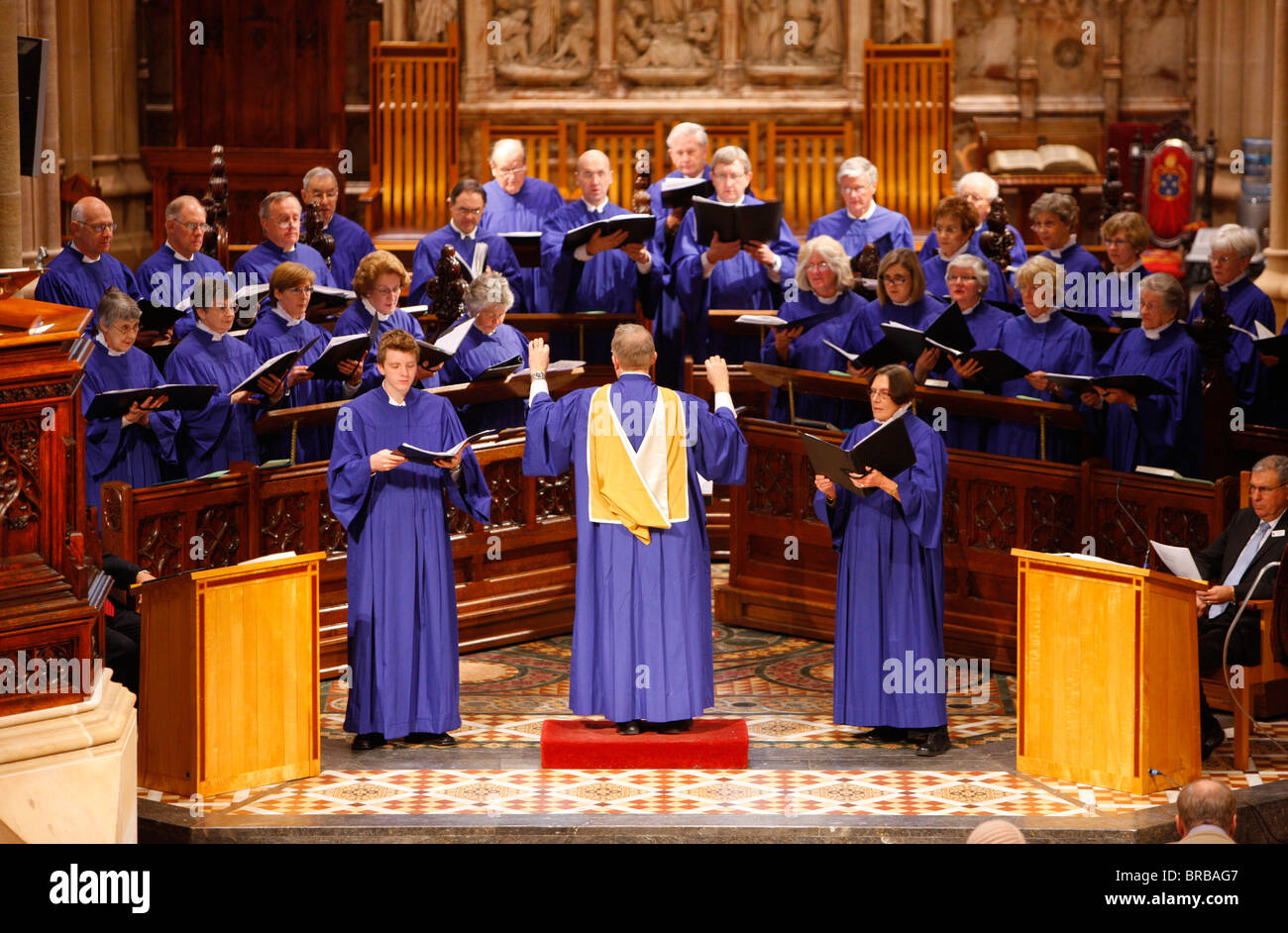 St. Andrew's cathedral choir, Sydney, New South Wales, Australia - Stock Image