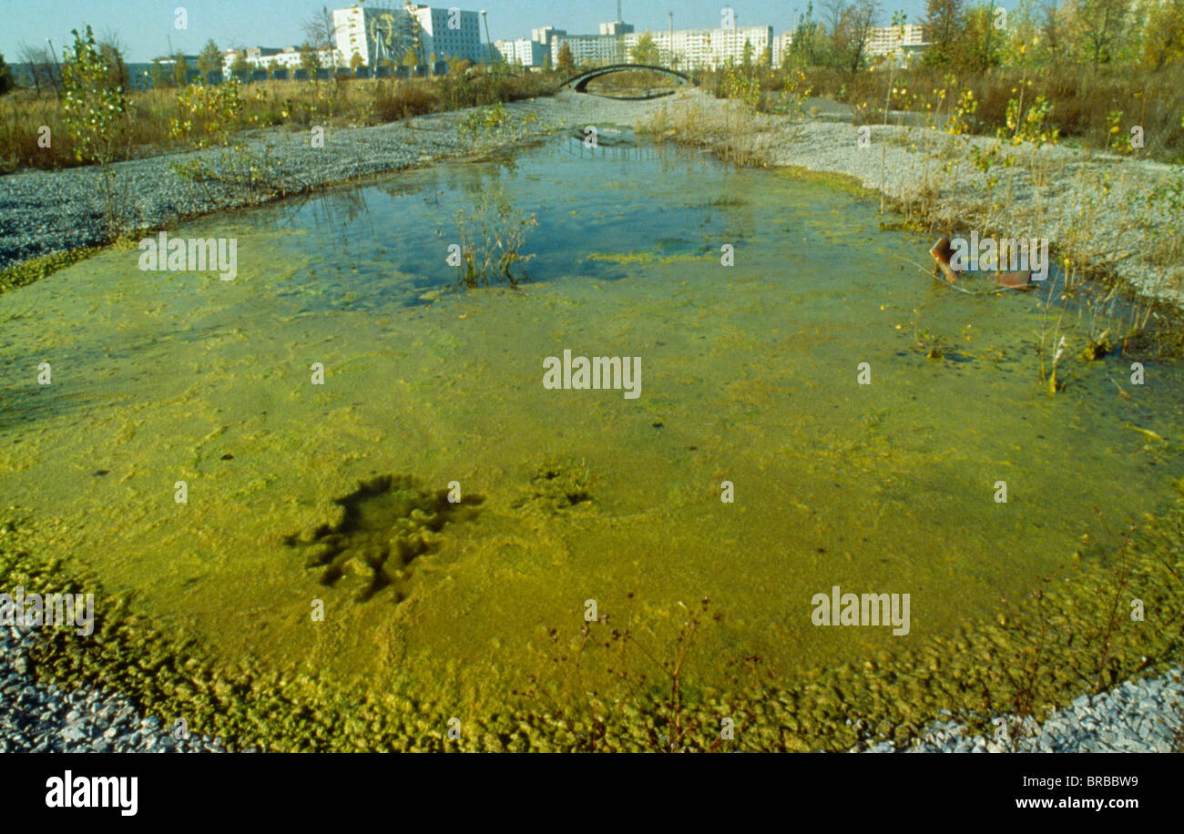 UKRAINE Kiev Pripyat Evacuated city and contaminated water in area after the Chernobyl nuclear disaster - Stock Image