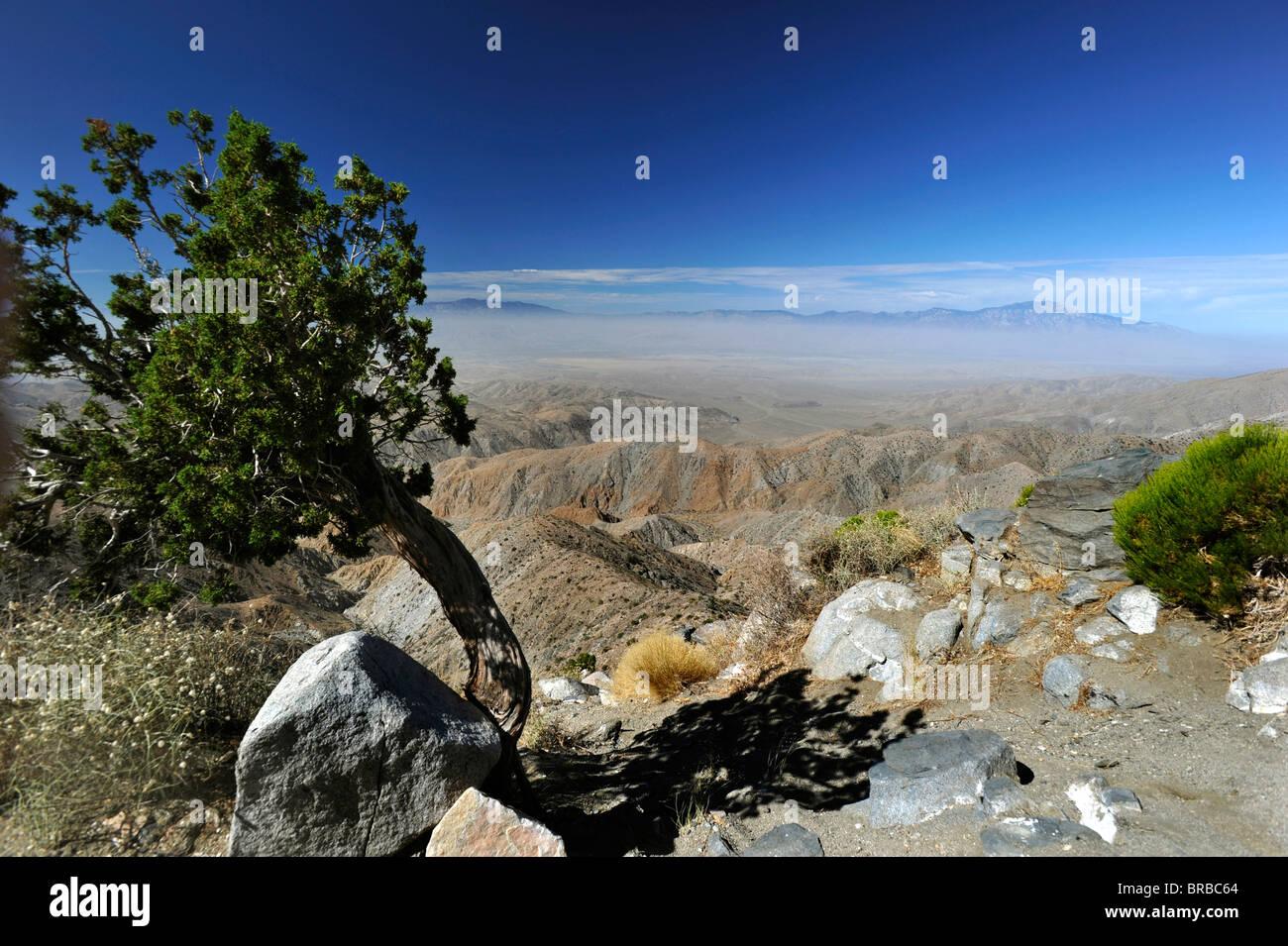 Joshua Tree National Park Arizona air pollution - Stock Image