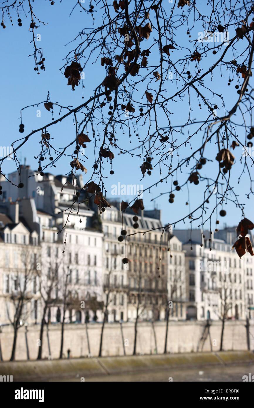 Quais de Seine. Ile Saint Louis, Paris, France - Stock Image