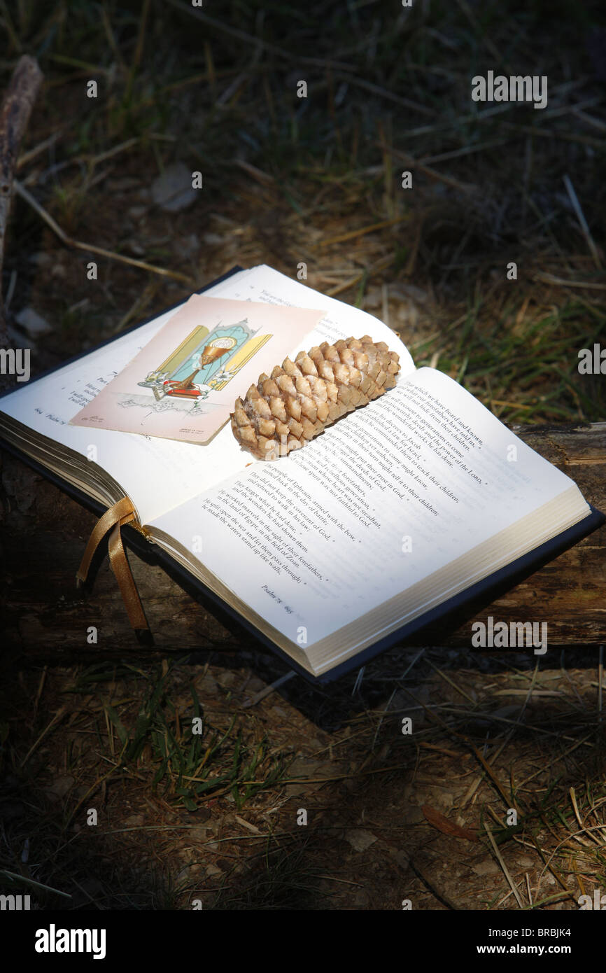 Bible with pine cone, Haute Savoie, France - Stock Image