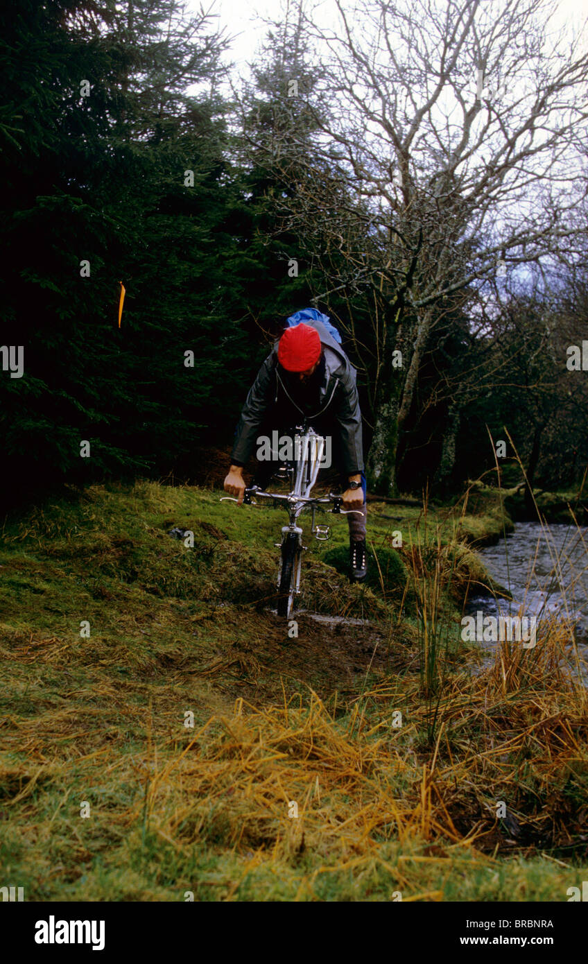 Mountain biker hits obstacle and goes over handlebars - Stock Image