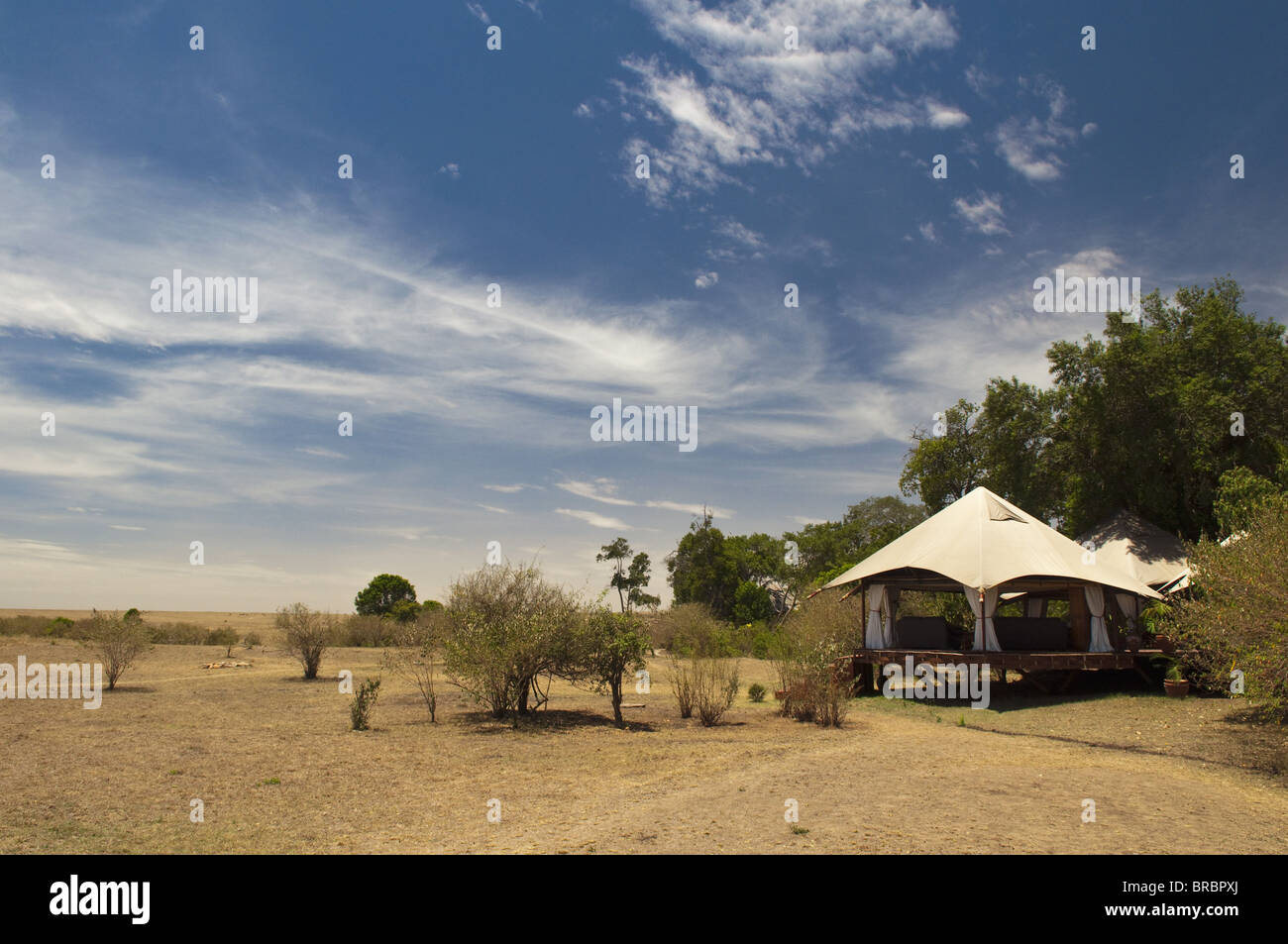 Mara Plains Tented Camp, Masai Mara, Kenya., East Africa - Stock Image