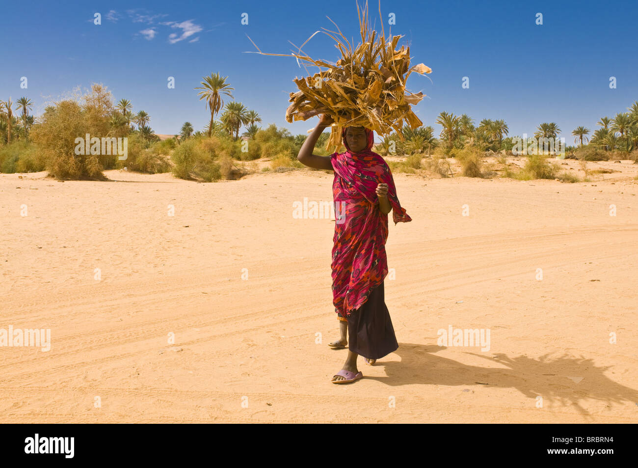 Woman carrying firewood, Ouadane, Mauritania - Stock Image