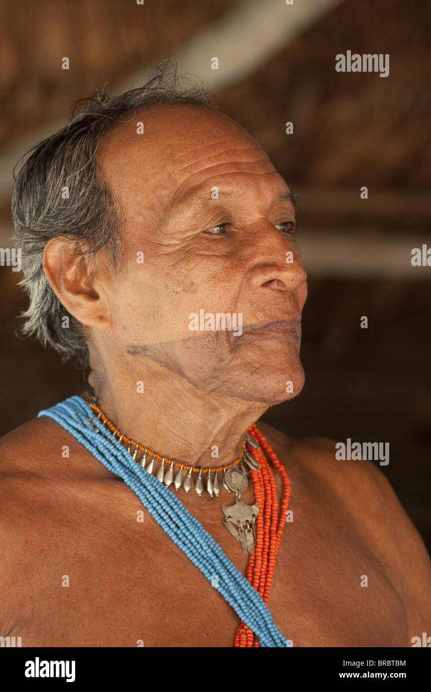 Medicine man with facial tattoo, healer of tribe of Embera indigenous people, Panama, Central America - Stock Image
