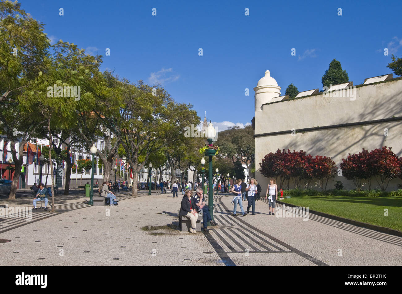 Pedestrian zone, Funchal, Madeira, Portugal - Stock Image