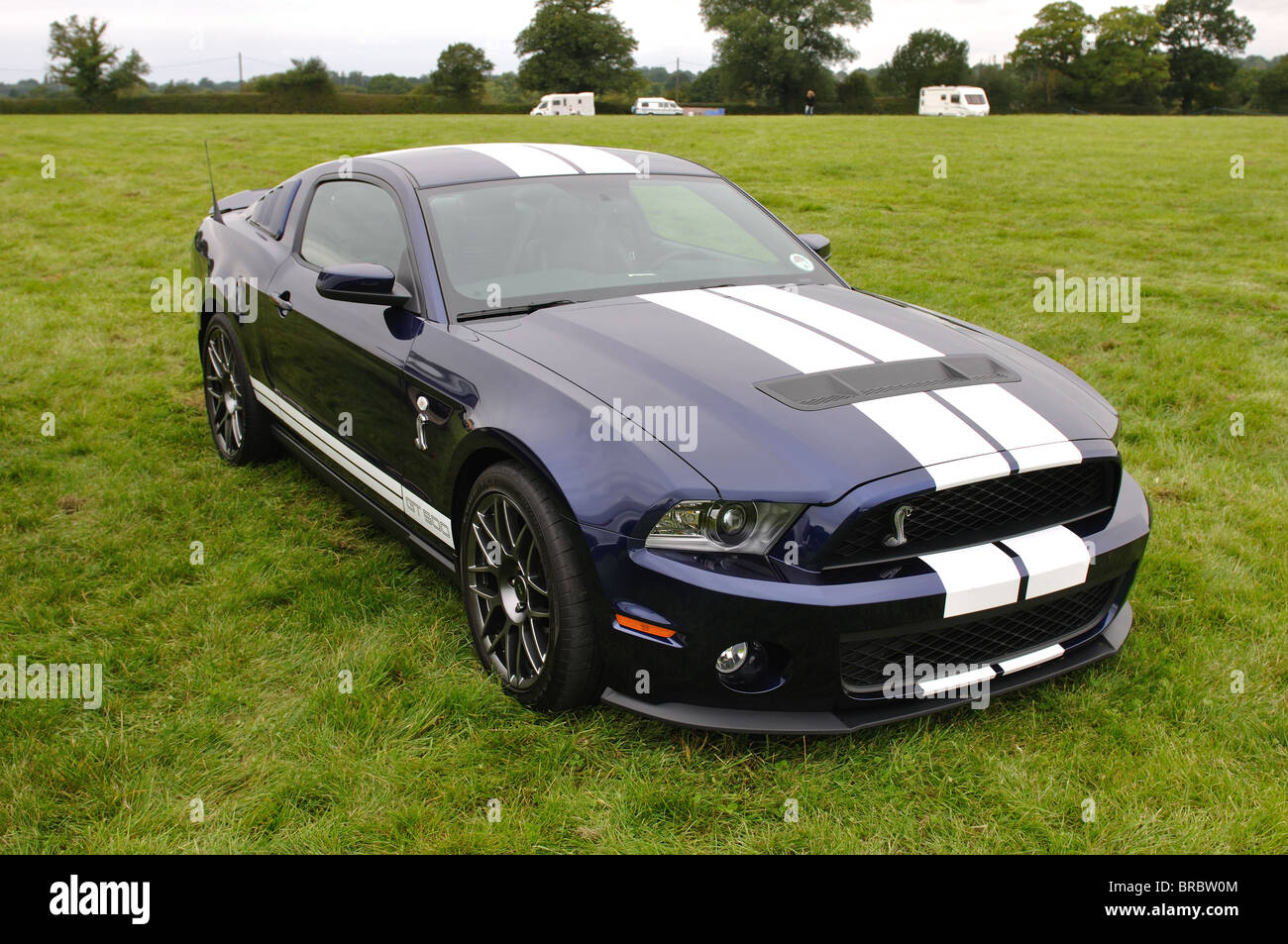 Ford Shelby GT500 Cobra   Stock Image