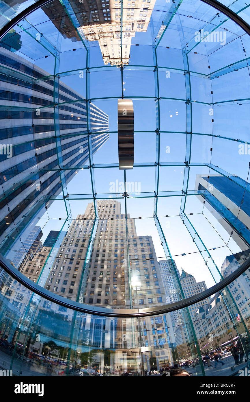 Skyscrapers of Fifth Avenue viewed from below through a glass roofed ceiling, Manhattan, New York City, New York, - Stock Image