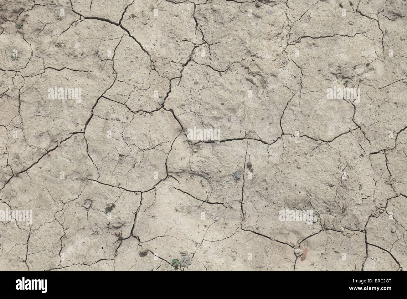 Background texture of a flawed dried out ground. Stock Photo