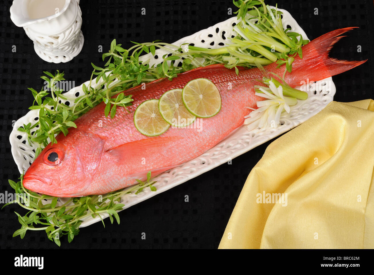 Red Snapper Fish Stock Photo