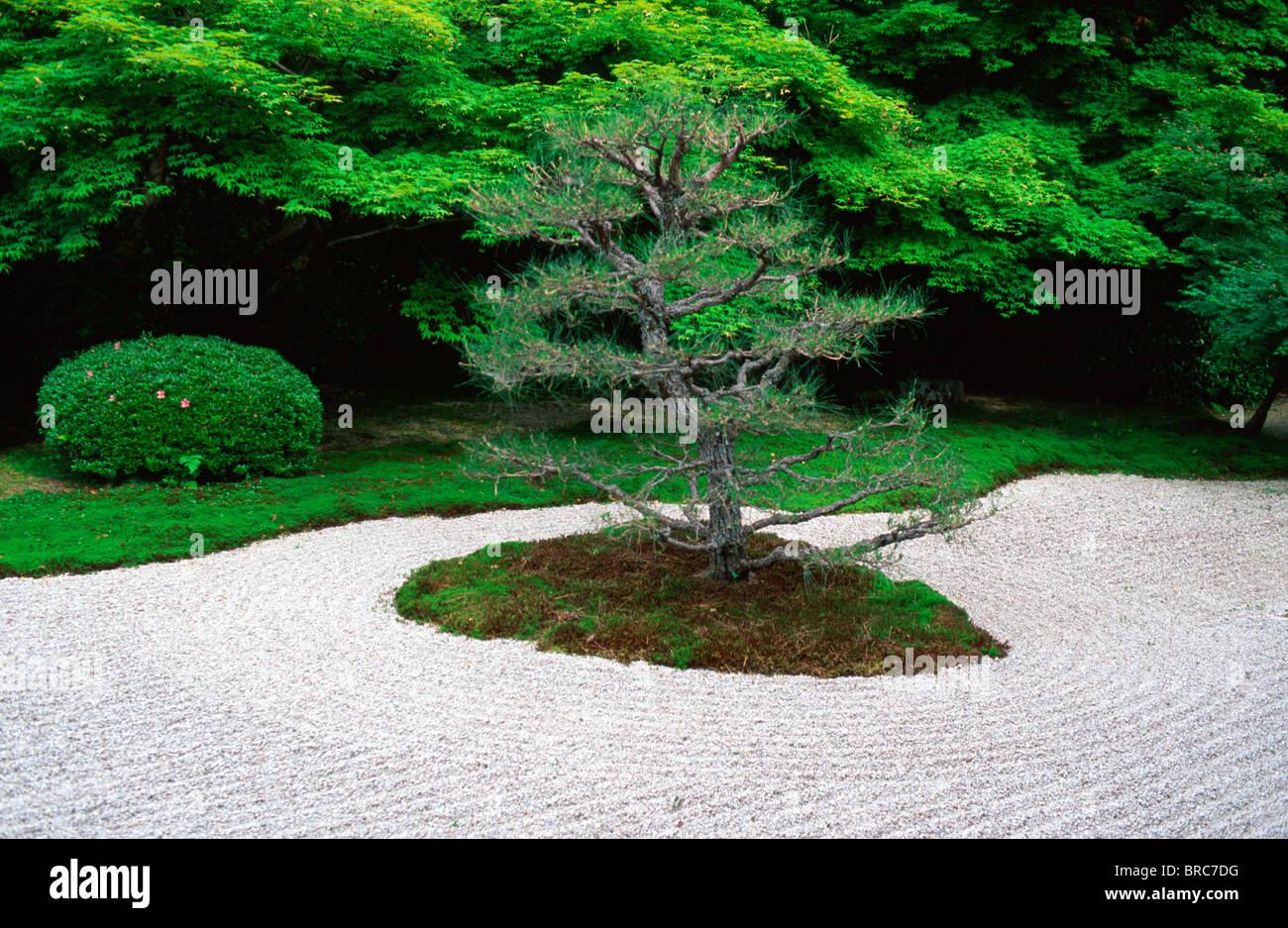 Raked sand in Tenjuan garden, Nanzenji temple, Kyoto Japan. - Stock Image