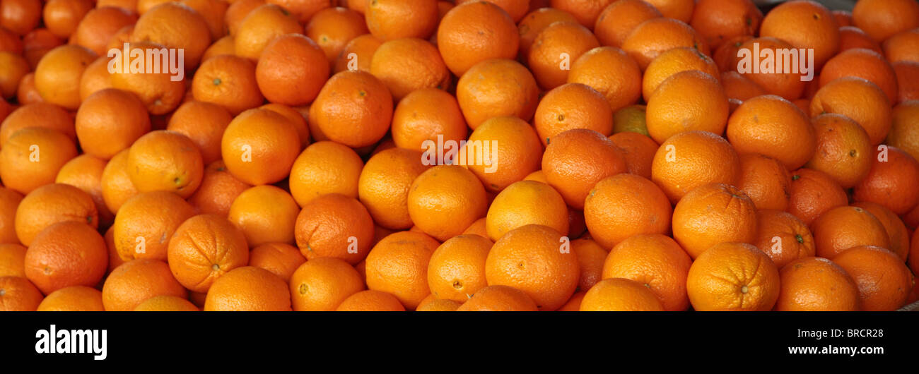 Juicy oranges background texture. - Stock Image
