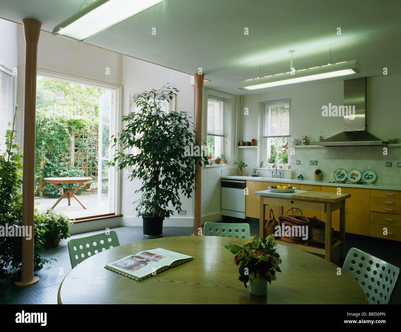 Tall Houseplant Beside Open Patio Doors In Well Lit Modern Townhouse  Kitchen Dining Room With Pale Wood Table
