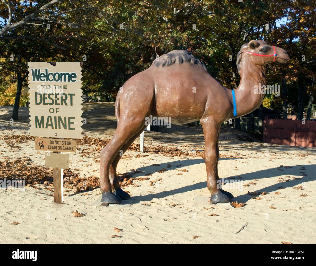 Desert of Maine in Freeport - Stock Image
