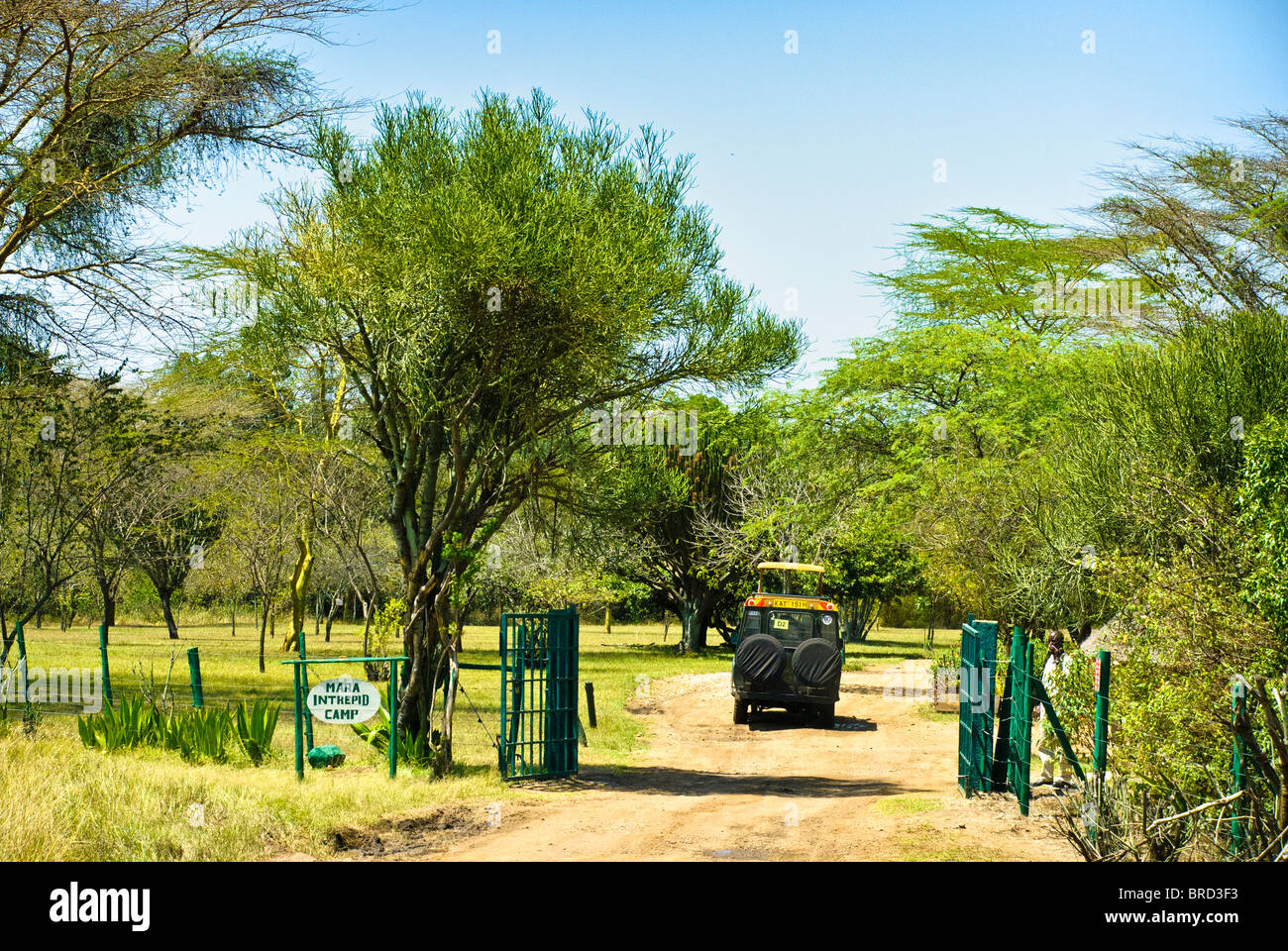 Safari vehicle entering the Mara Intrepids Camp, Masai Mara National Reserve, Kenya, Africa - Stock Image
