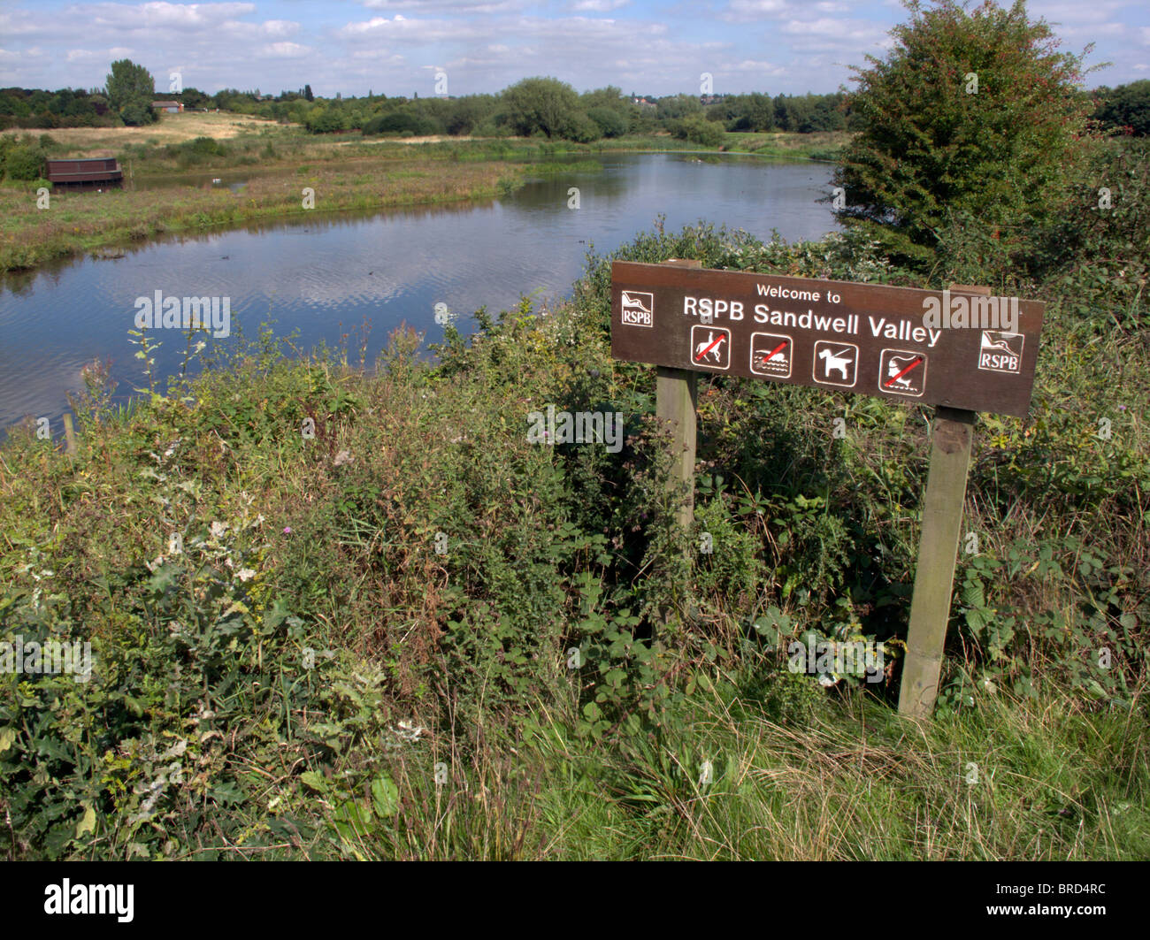 Sandwell Valley RSPB reserve, Midlands, September 2010 - Stock Image