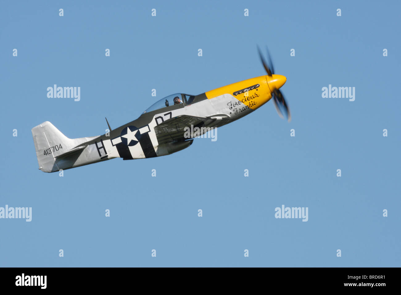 "P-51D Mustang "" Ferocious Frankie"" displaying at Goodwood 2010 Stock Photo"