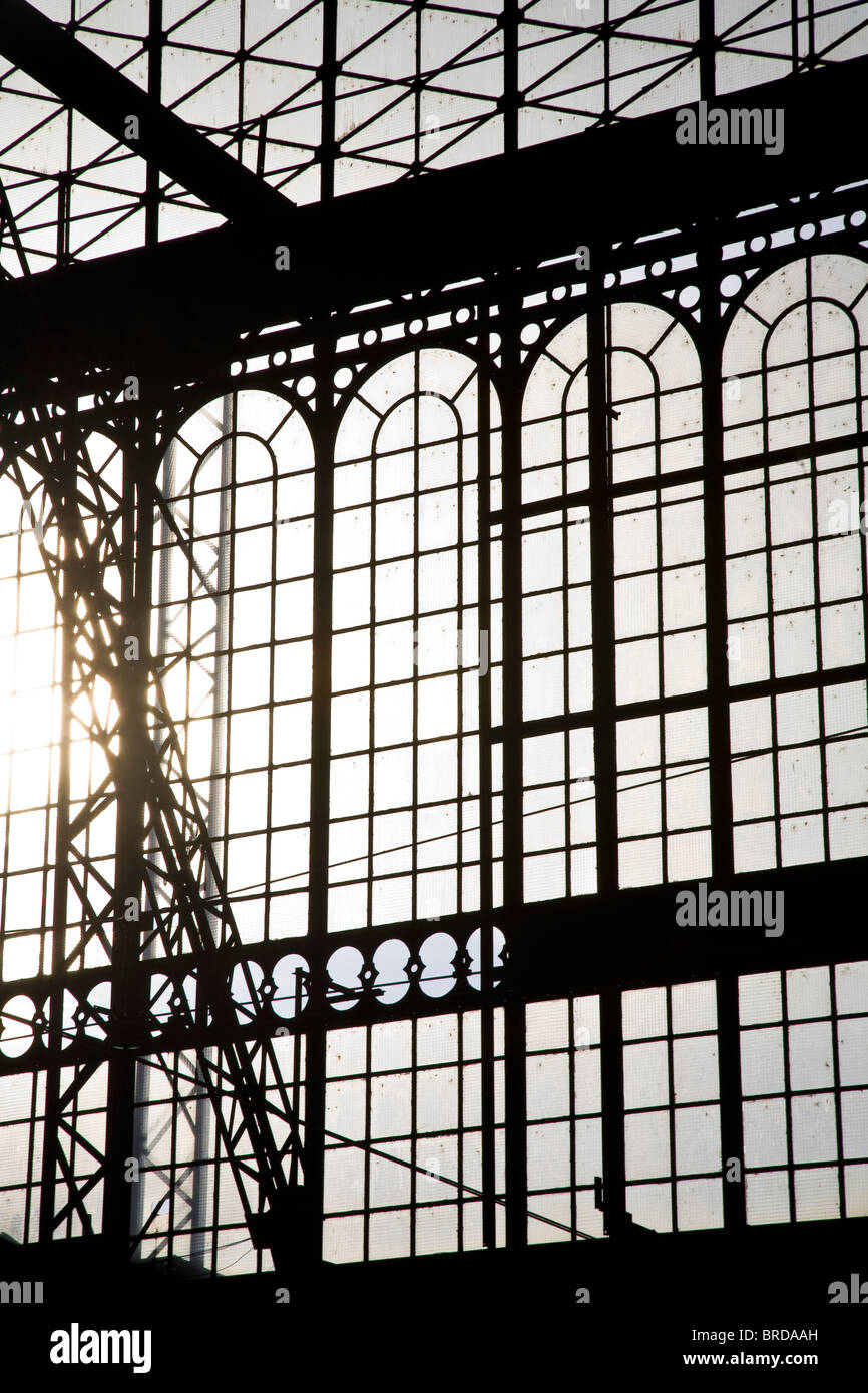 gare des Austerlitz railway station iron and glass architechture - Stock Image