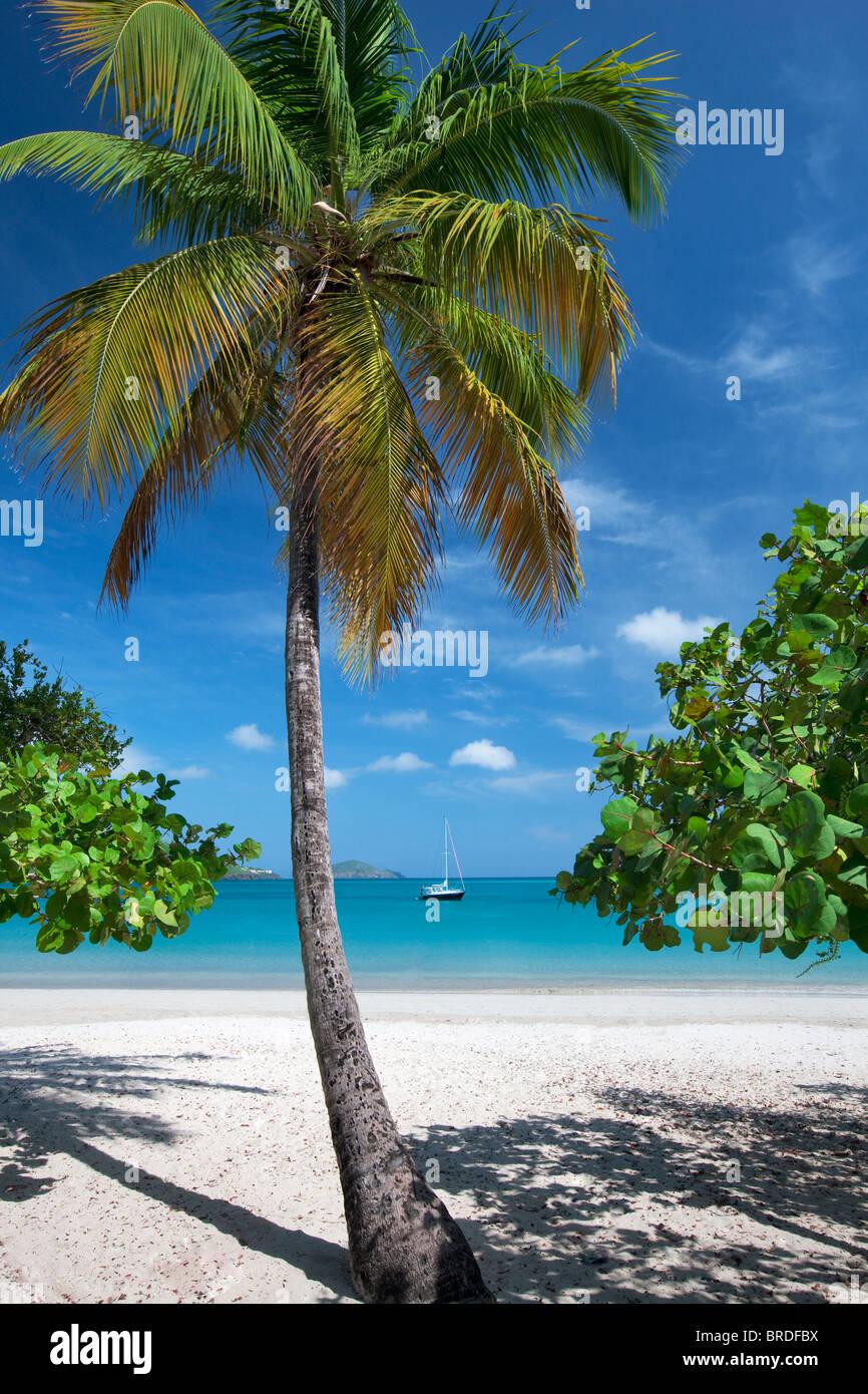caribbean stock photos caribbean stock images alamy. Black Bedroom Furniture Sets. Home Design Ideas