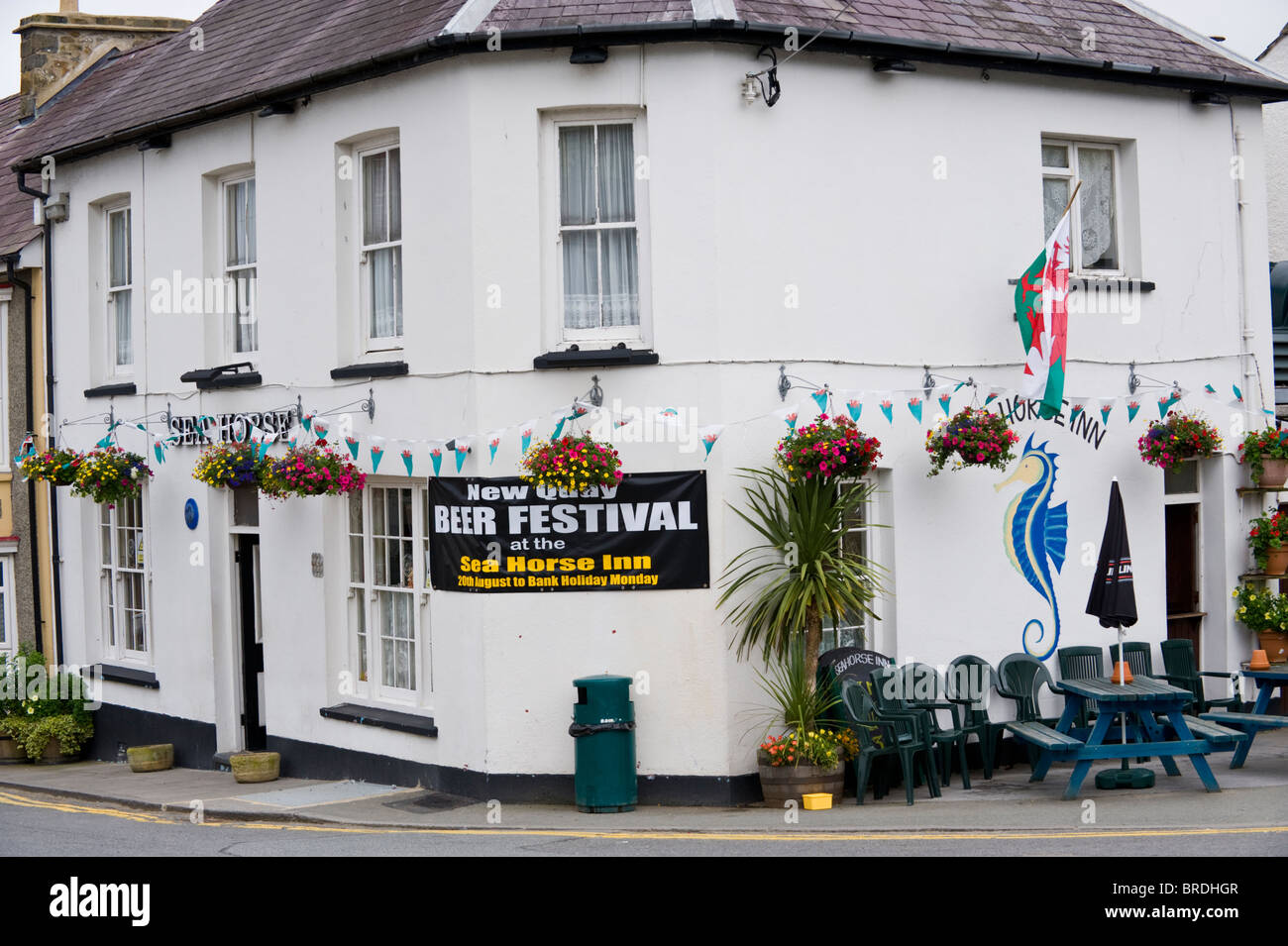 Exterior of the Sea Horse pub with banner for beer festival in the seaside resort of New Quay, Ceredigion, West - Stock Image