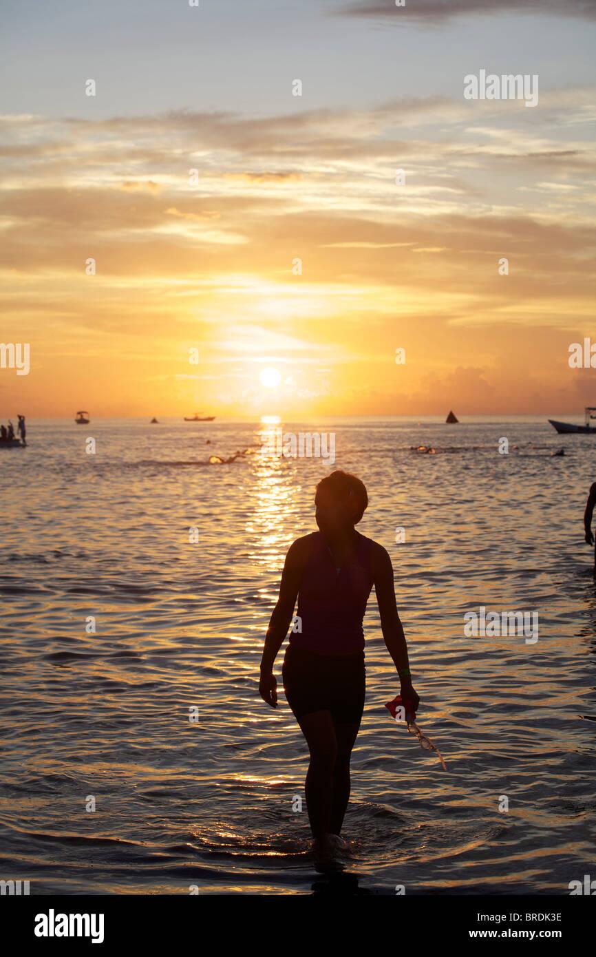 Early morning swim - Stock Image