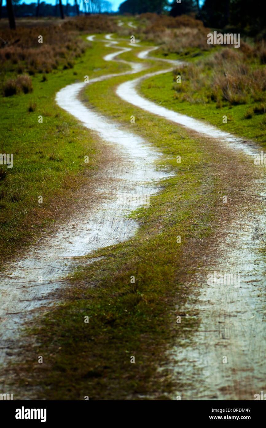 Winding dirt road - Stock Image