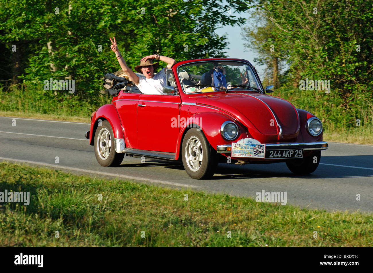 volkswagen beetle car auto classic stock photos volkswagen beetle car auto classic stock. Black Bedroom Furniture Sets. Home Design Ideas