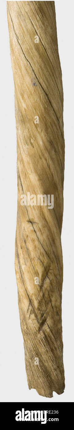 Narwhal Tusk Stock Photos & Narwhal Tusk Stock Images - Alamy