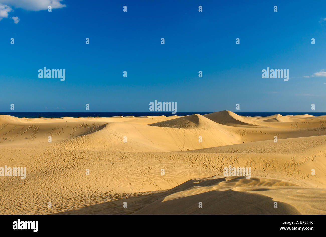 Sand dunes of Maspalomas, Gran Canaria, Canary Islands, Spain - Stock Image