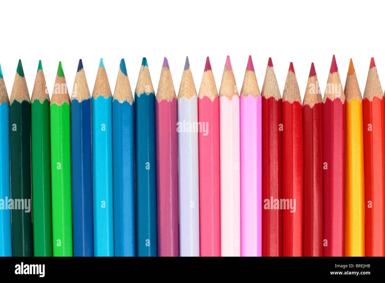 Multi-coloured pencils on a white background - Stock Image