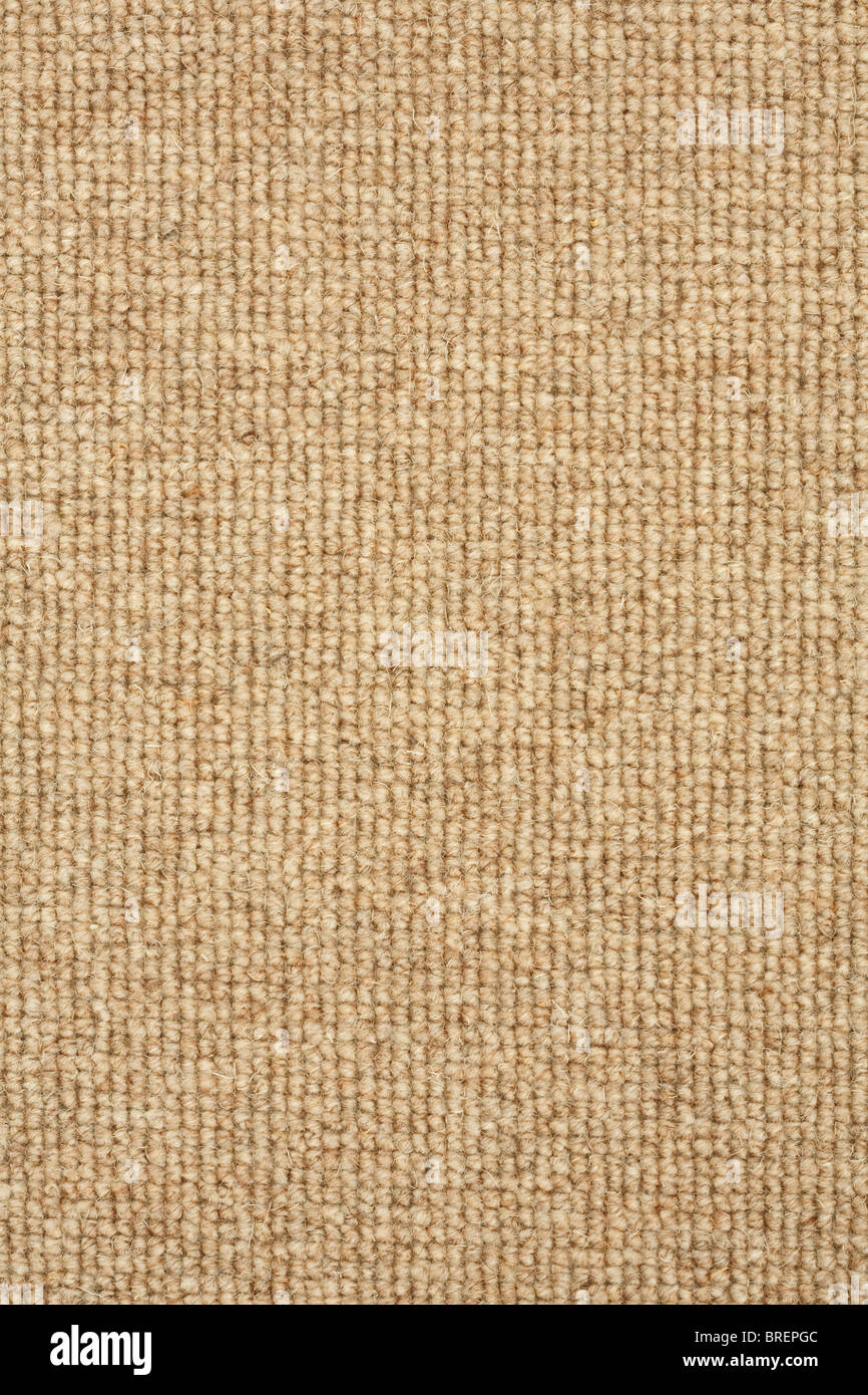 Detail of a neutral colored  loop pile carpet - Stock Image