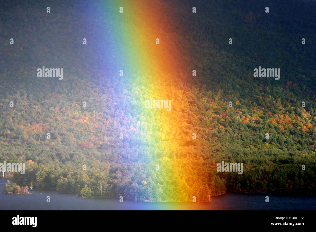 Rainbow closeup with the forest trees as a background - Stock Image