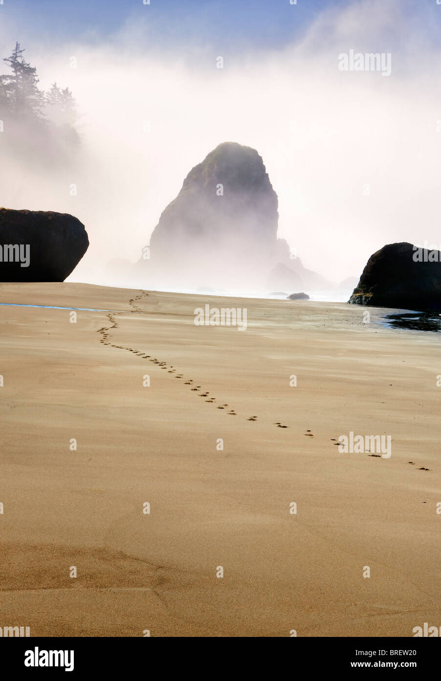 Fog and footprints at Port Orford beach. Oregon - Stock Image