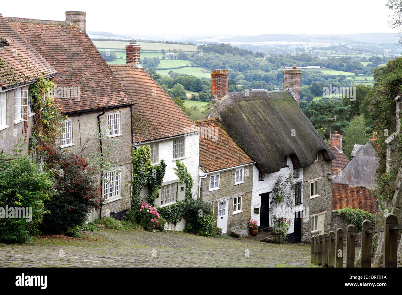 Gold Hill, Shaftesbury, Dorset, South England, Great Britain, Europe - Stock Image
