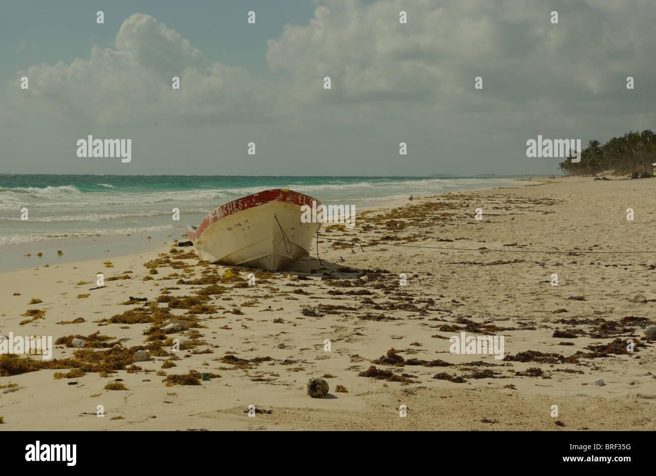 Weathered boat with peeling paint tied on windswept sandy beach in Tulum Mexico.Biosphere in distance with fluffy - Stock Image