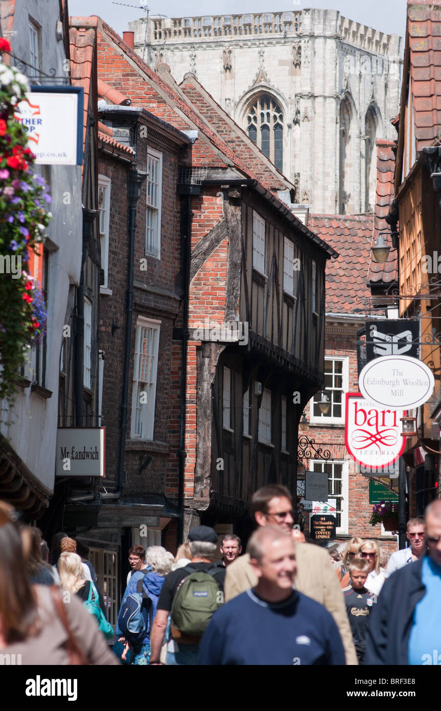 'The Shambles' in York, England - Stock Image