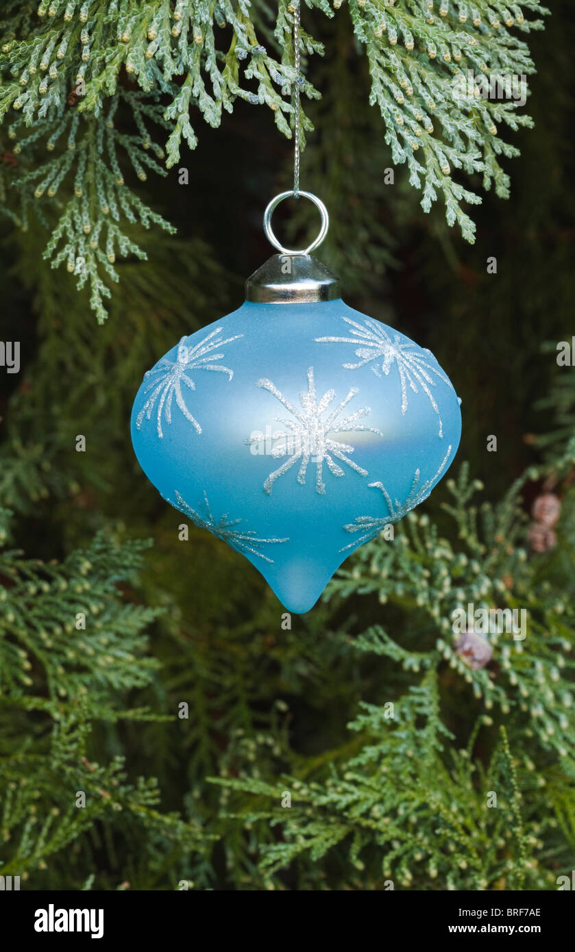 Closeup of a blue christmas decoration hanging in a real christmas tree - Stock Image