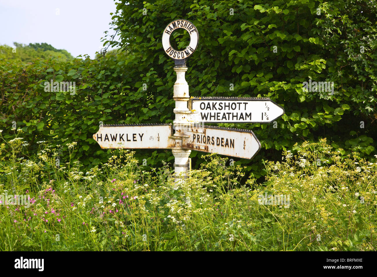 A signpost among wild flowers in the English countryside in summer. Hampshire UK. - Stock Image