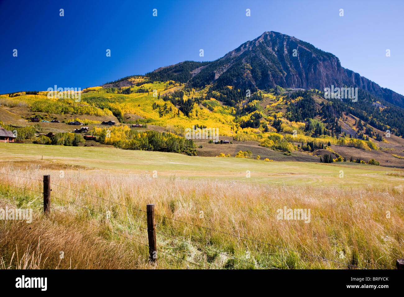 Autumn view of golden aspen leaves and Mount Crested Butte (12162'), Elk Mountains, Colorado, USA - Stock Image