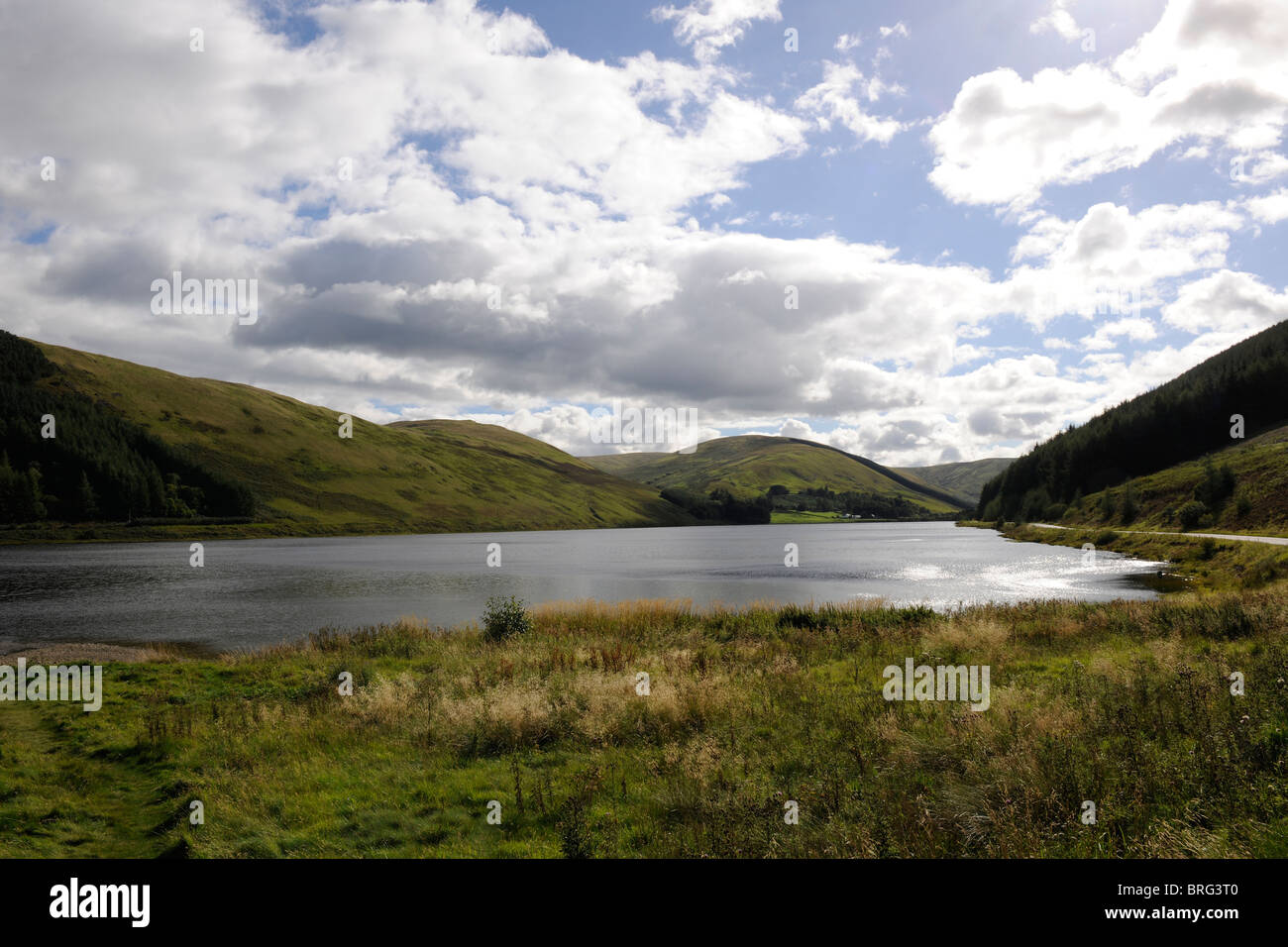Loch of the Lowes, Scottish Borders Dumfriesshire-2 - Stock Image