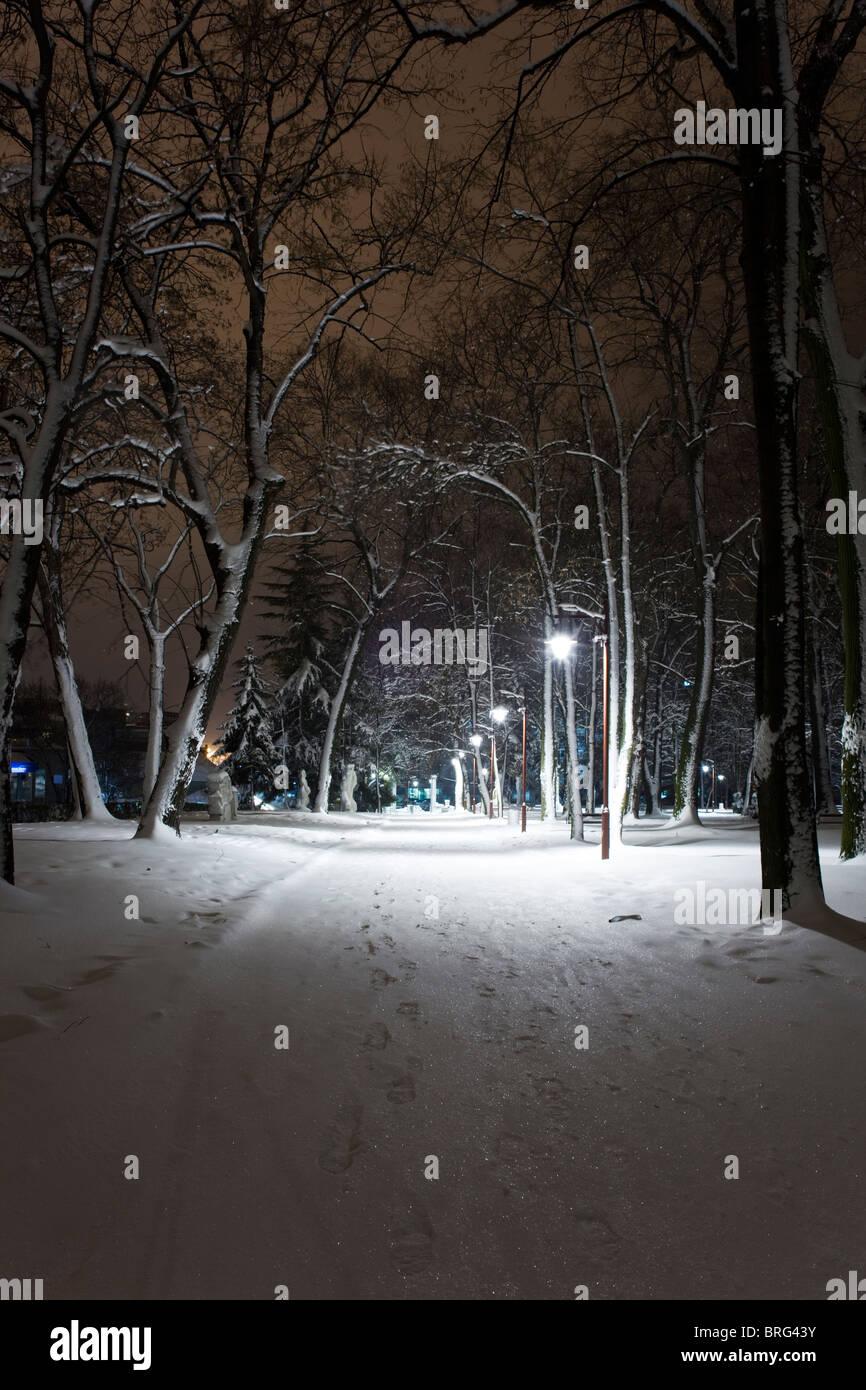 Park Bukovicka Banja Arandjelovac Sumadija Serbia snow - Stock Image