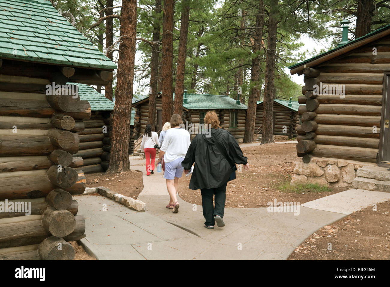 grand in canyon type arizona lodging williams site campgrounds cabins koa